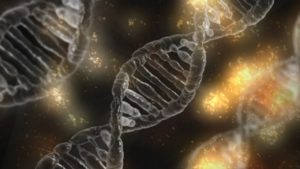DNA the miracle of life