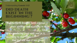 Understanding Genesis 1:12 | Did Death Exist 'in the beginning'? | And the Earth brought forth a tender sprout, grass yielding seed across to their kinds, a tree producing fruit with seed in it according to their kinds. And God saw that it was Good.